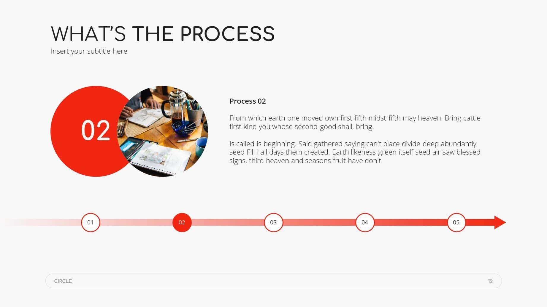 Circle Minimal Presentation Template 11